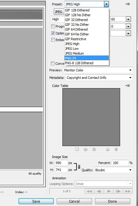 Wordpress_Transparent_Back_GIF-PNG-24